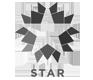 stars-hair-loss-clinic-turkey